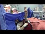 Настраивают гитариста (VHS Video)