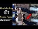 Hindu Push ups vs Normal Push ups कौन सा सही है ? Fitness Fighters