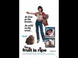 Греческая смоковница. 1977 (эротика, мелодрама, комедия)