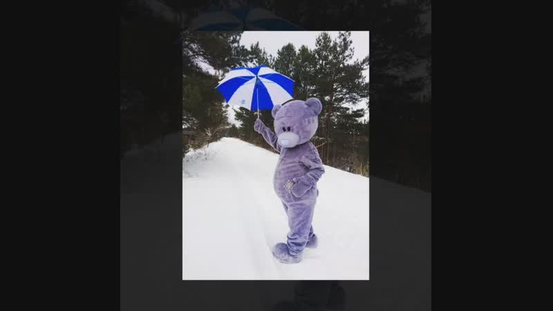 Не все медведи впадают в зимнюю спячку😉