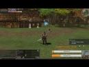 Lineage 2, AsterioS x55, Destroyer , а что он вообще может? меч или топор?