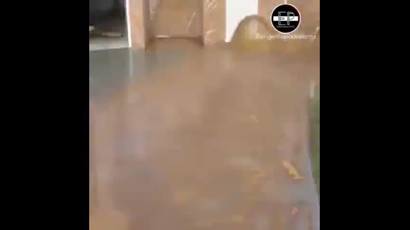 Брусчатка во дворе частного дома Заметки строителя