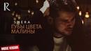 Shera Шера Губы цвета малины music version