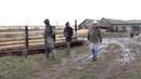 Канадский ковбой стал ярославским фермером