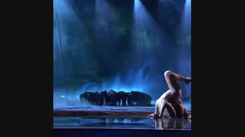 Шикарное выступление на шоу талантов