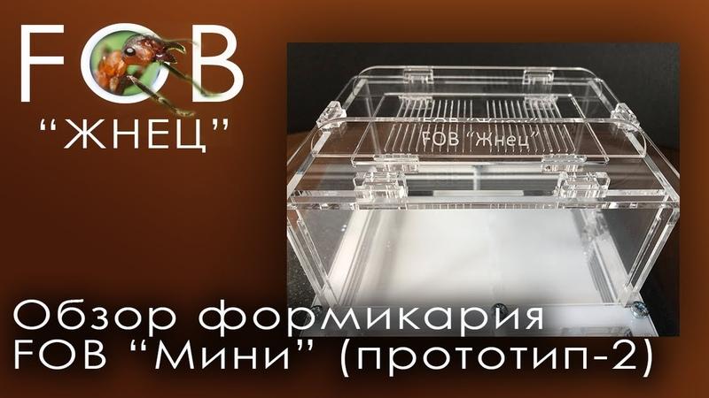 Обзор формикария FOB Мини Прототип-2