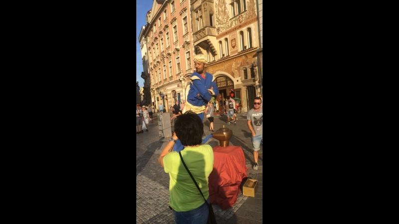 Джин в Праге