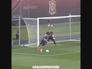 The best goalkeepers