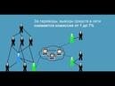 Обзор бонусной программы T Hive Пассивный заработок в интернете 18