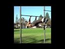 American Ninja Warrior - Best Of Warren James Li