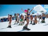 Сексуальные красотки на сноуборде