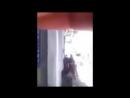Британский правозащитник снял видео он последовал за детьми после того как израильские солдаты арестовали их и вот что он уви