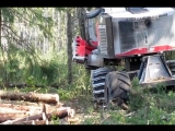 Timber Pro Processor