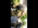 ДМБ Русик и орёл 1