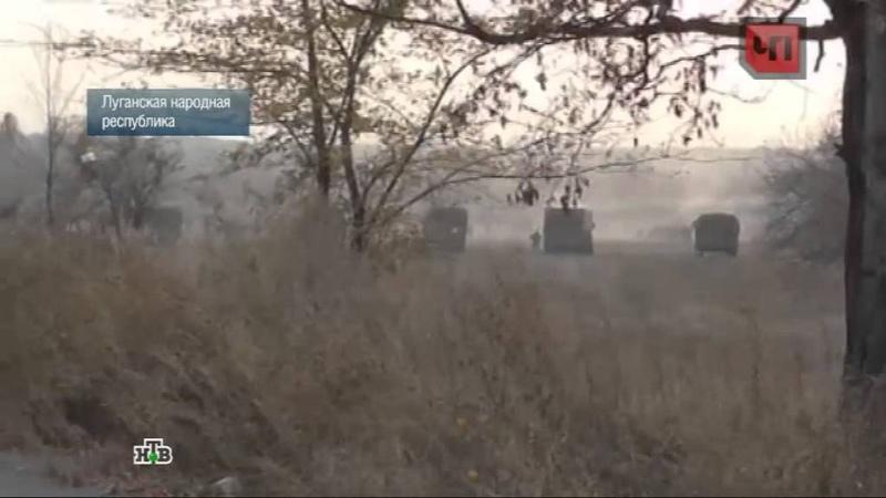 Боец батальона «Донбасс» рассказал о пьянках сослуживцев и бесчинствах нацгвардии