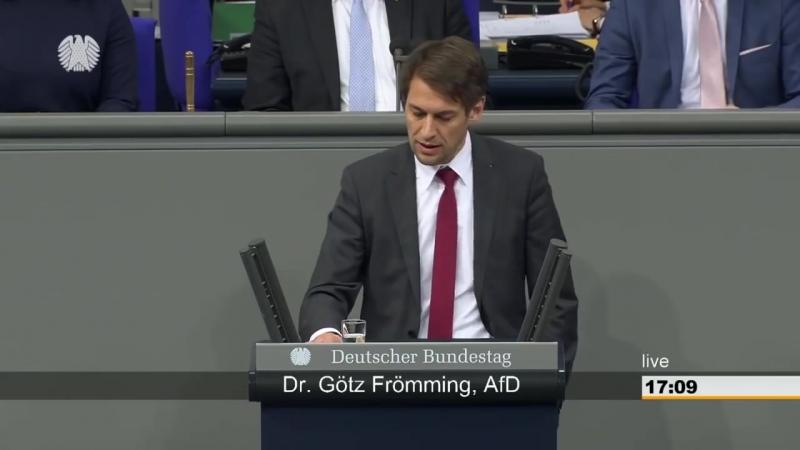 Dr Götz Frömming AFD zeigt Regierung mit PHÄNOMENALER Rede im Bundestag wo es lang geht
