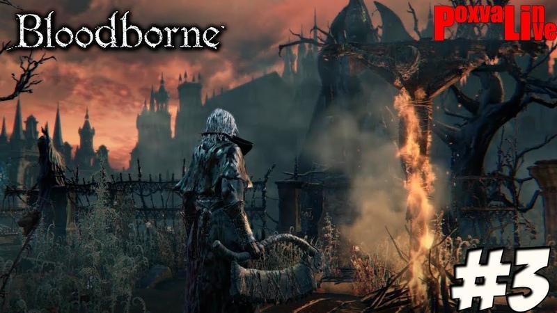 Дорога в Старый Ярнам Bloodborne 3