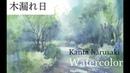 春崎幹太 水彩画 木漏れ日 kanta harusaki watercolor