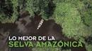 ¡Descubre lo mejor del Amazonas!