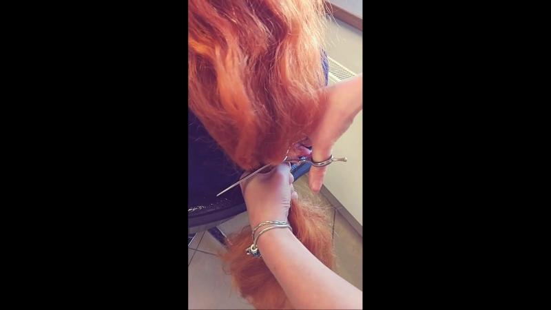 русалка отрезает волосы