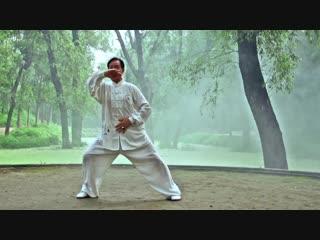Чжу Тьенцай, 13 форм Лао цзя Чэнь ши тайцзицюань