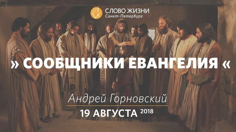 Сообщники Евангелия Андрей Горновский Слово Жизни г Санкт Петербург