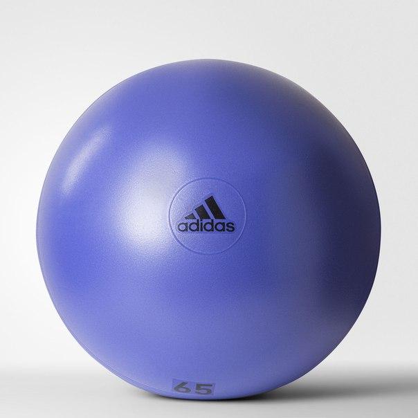 Гимнастический мяч Flash Purple (65 см)