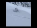 Когда много снега, но ты очень любишь лыжи..