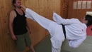 Andriana karate kicking techniques preview