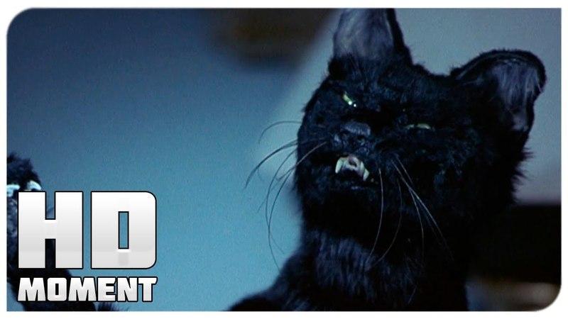 Синди дерется против кошки - Очень страшное кино 2 (2001) - Момент из фильма