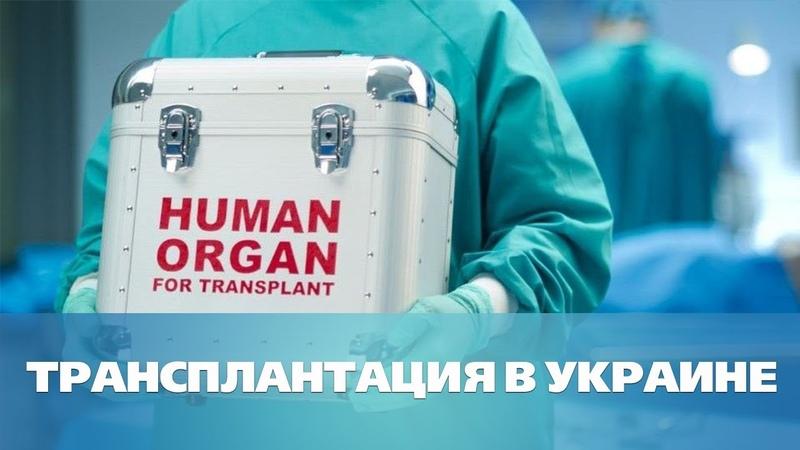 Закон о трансплантации: прорыв или провал?