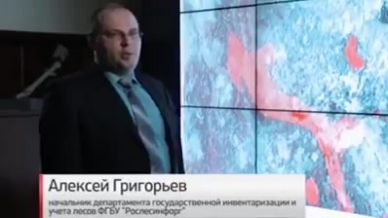 Как уничтожают Руский Лес