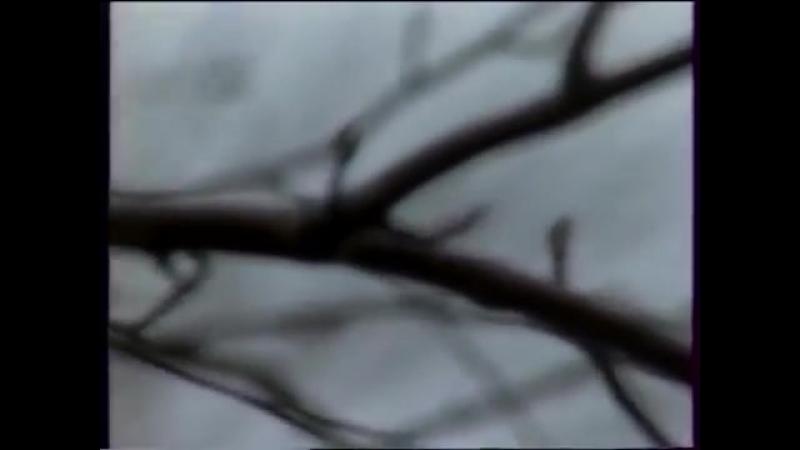 Виталий Власов - Cанаабын өйдөөрүүй (видео-клип). 1992 сыл