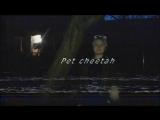 Кристина Гершвин/Vine/SKELETAL_BODY