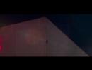 Енот взобрался на высотку (241м) в Миннесоте (США [16.06.2018]