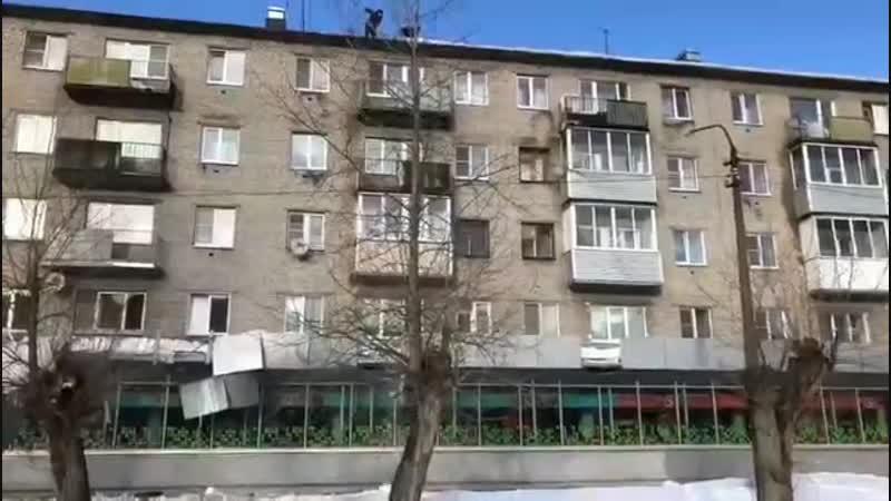 Очередные снегоуборочные сверхразумы из Тихвина.