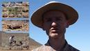 Ecological study on the Karoo dwarf tortoise (Chersobius boulengeri)