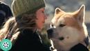 Энди Уилсон забирает Хатико к себе домой. Хатико: Самый верный друг (2009) год.