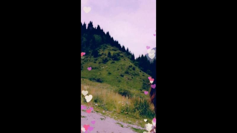 Snapchat-1712106804.mp4