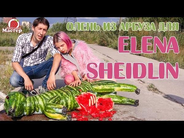 Проект Олень из арбуза для Elena Sheidlin