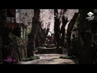 Dan Schneider - Kaori (Original Mix) [Sueno Digital_Midnight Coast] Promo Video Edit