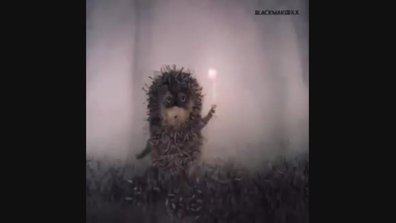 Ежик в тумане Цой - Сказка