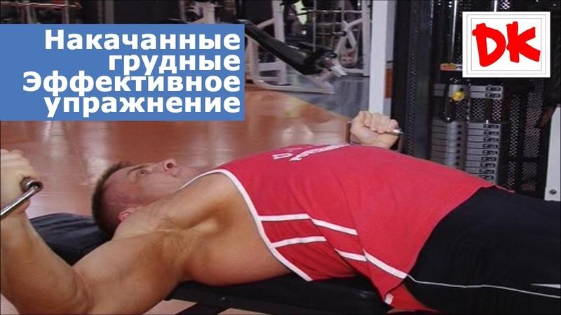 Накачанные грудные мышцы Эффективное упражнение для прорисовки грудных мышц от ДК