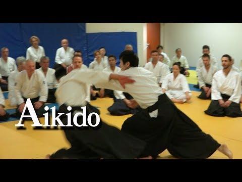 合気道 - 柔らかく大きく投げる Aikido Highlights in Monaco