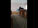 концерт отделения фортепиано