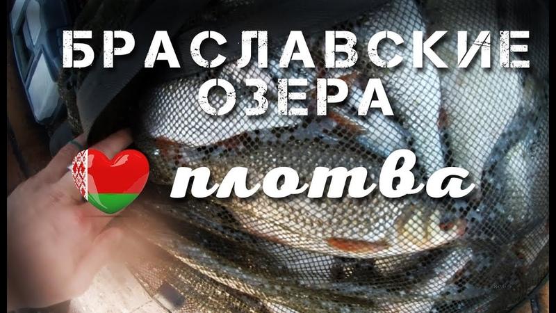 Рыбалка Беларусь 2018, Браславские озера - Укля ловля плотвы на фидер и бортовые удилища