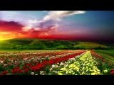 Восточная_душевная_музыка......._Aranjiman_Celal_Ehmedov_.mp4