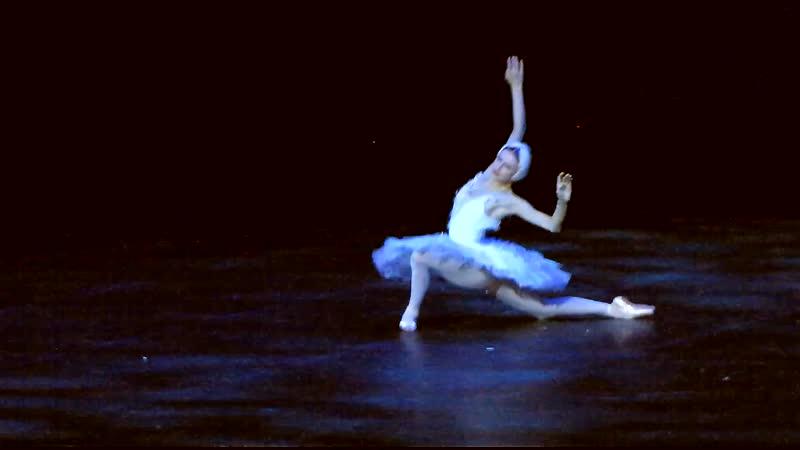Лебедь (Сен-Санс) - Кристина Шапран (Зарядье 2019)