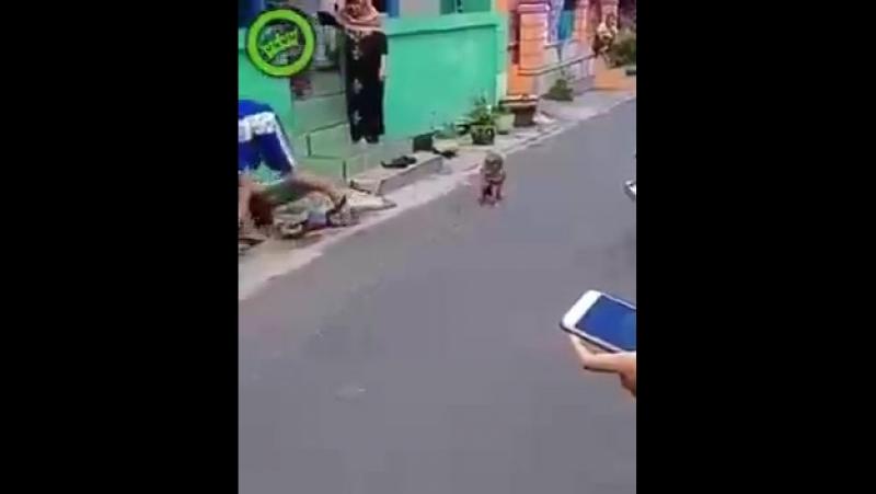 Лихач на мотоцикле сбил школьника...