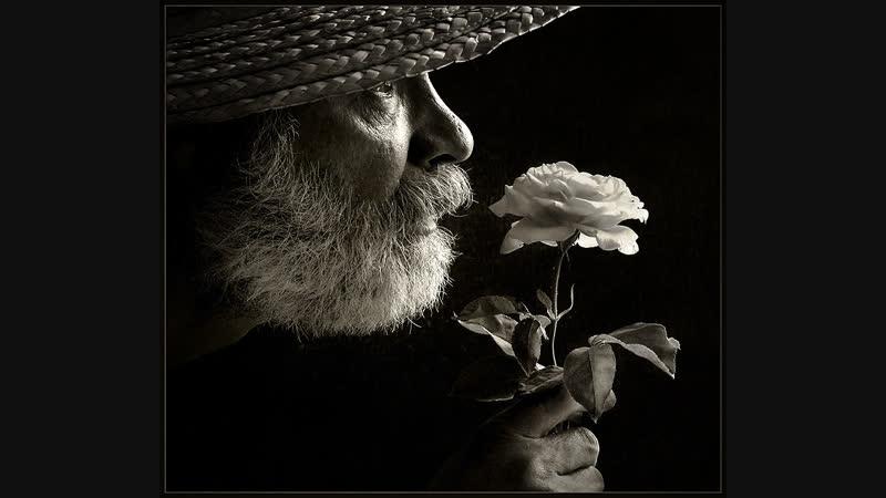 Белые розы Сергей Кузнецов В стиле Михаила Шуфутинского